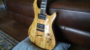 USA CUSTOM WARRIOR SIGNATURE GUITAR