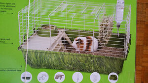 Cage for cheap price