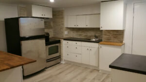 Beautiful, Newly Renovated 1 Bedroom Apartment in High Park!
