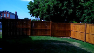 Certified Licensed Red Seal Carpenter for your deck & fencing