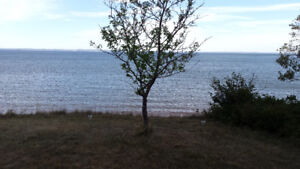 beach front on Bay of Fundy