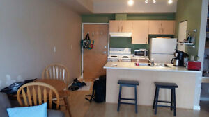 Fully Furnished 1 bedroom sublet close to UVIC