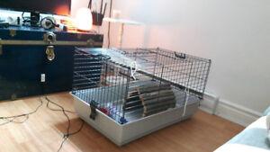 Cage de lapin, cochon d'Inde ou furet