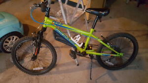 Youth 20 inch bike $75