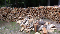 Firewoood and Camp Firewood