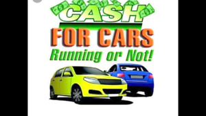 We pay cash money for scrap and junk  cars Vans trucks and SUVs