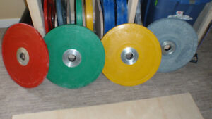 Rubber Bumper Plates for Weight Lifitng