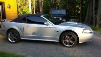 2002 Ford Mustang GT Supercharged
