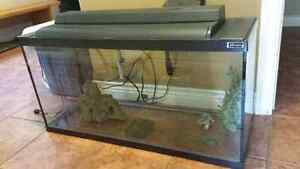 Fish tank 30 gallons