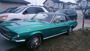 Mustang 289 coupe for Sale