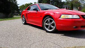 2000 Ford Mustang GT Coupe Low KM
