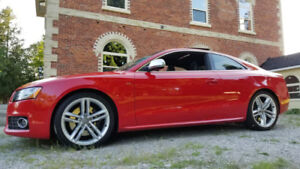 Audi S5 MANUAL- RARE, LOW KMS, RED, FULLY LOADED!!