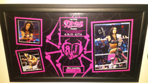 Wwe's Aj Lee signed limited edition #162/295