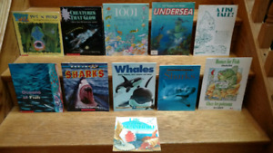 11 Sharks, Whales and other Sea Creatures children's books