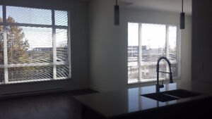 3 Bedroom Apartment for Rent ASAP!