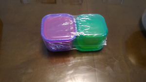 21 Day Fix Proportion Containers