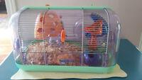 Hamster avec sa cage et accessoires$30 ou meilleur offre