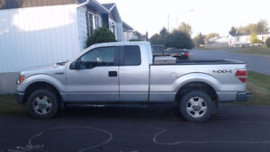 2010 Ford F-150 Camion