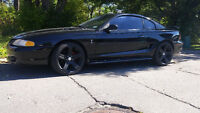 Mustang 5litres
