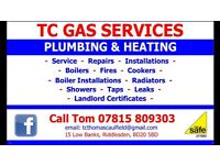 Boiler man / gas man / plumbing + heating engineer