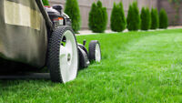 providing lawn care services to help pay for college tuition
