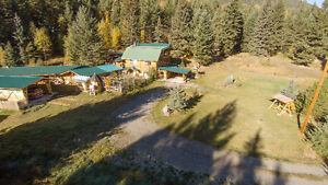 Hand Crafted Log Home on 10 Acres