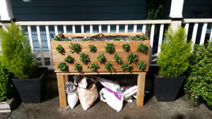 Handcrafted Cedar Planter Box