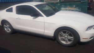2011 Ford Mustang Coupe (2 door)