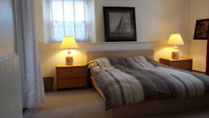 Beautiful Downtown One Bedroom Apartment, 355 Division St.