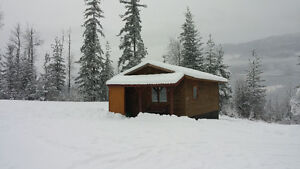 Cabin for rent near Revelstoke by day or week