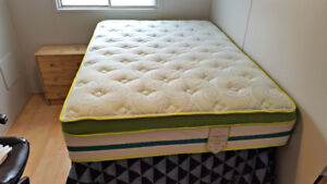 Brand New Springwall Chiropractic Firm Full-Sized Mattress
