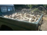 Dry & Seasoned Logs £80