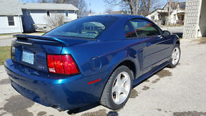 2000 Ford Mustang Coupe (2 door) gt