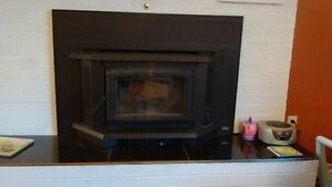 Pacific Energy Wood Stove Insert