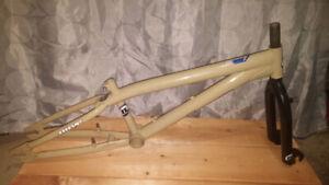 Older Nirve Panic & MOSH Frame and Fork sets