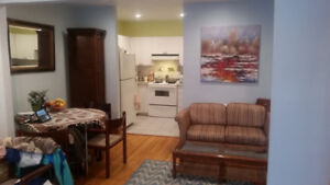 Fully Furnished spacious 3 1/2 available February 1st (Verdun)