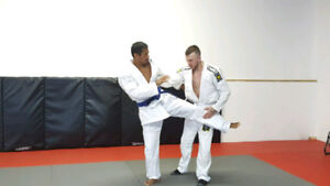 Train 1 on 1 with the a Gracie GJJ certified instructor