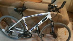 CCM hybrid bike