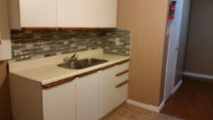 All inclusive Bachelor Apt. for $600