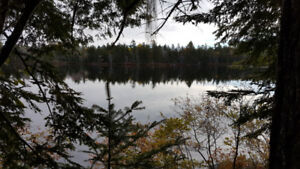 Executive 1.63 Acre Treed Lakefront Lot 30 Minutes to Halifax