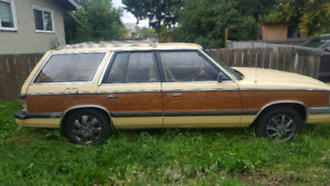 1985 Aries Woody Wagon
