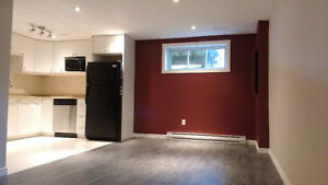 A louer / 1 Bdrm Apartment for Rent in Gatineau (Aylmer)