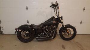 2013 Harley Dyna Street Bob 103