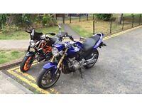 Honda CB600F Hornet 2007