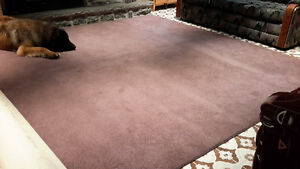 Grand tapis 10x12 en bonne condition