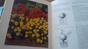 Easy Ways To A Beautiful Garden, Canada's Own, 1967 Kitchener / Waterloo Kitchener Area image 2