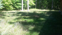 Lawn care service / property clean ups