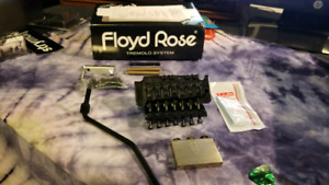 7-string Floyd rose special