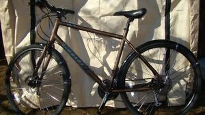Kona Dew Plus, Large Frame, Commuter With Fenders