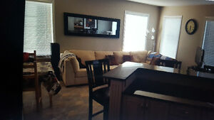 room available in Briarwood fully furnished townhouse